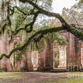 Dawna  Moore Photography - Sheldon Church Ruins Beaufort County South Carolina