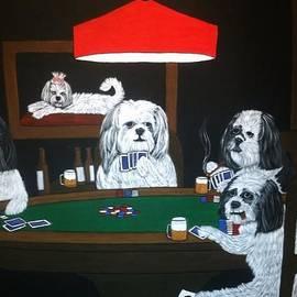 Tammy Rekito - Shih Tzu Poker