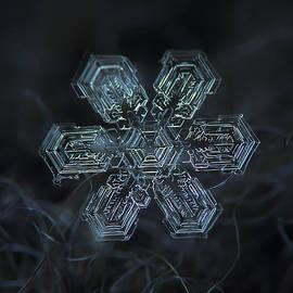 Alexey Kljatov - Snowflake photo - Shine