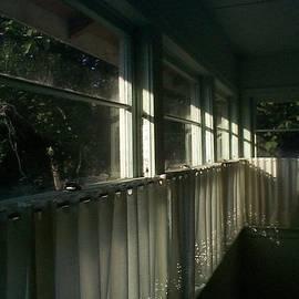 Michelle R Sparks - Shining Through