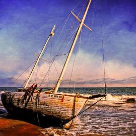 Lynn Bauer - Shipwrecked