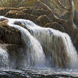Gregory Perillo - Shohola Falls