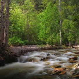Allan Van Gasbeck - Shorts Creek