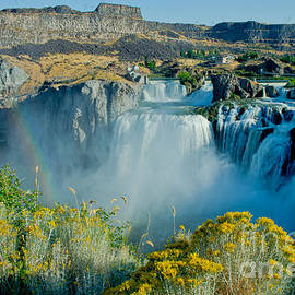 Nick  Boren - Shoshone Falls Landscape
