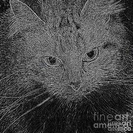 Ausra Paulauskaite - Shpooleete. Digital Cat Portrait in Black and White.
