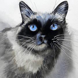 Hilda Vandergriff - Siamese Cat