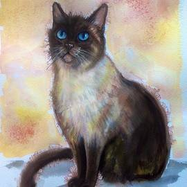 Katerina Kovatcheva - Siamese cat