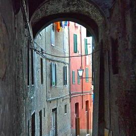 Amy Fearn - Siena Italy