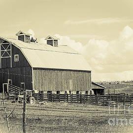Janice Rae Pariza - Sienna Colorado Barn