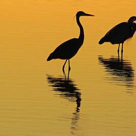 Kris Hiemstra - Silent Sunset