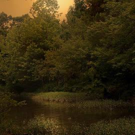 Nina Fosdick - Silent Water