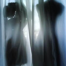 CJ Anderson - Silhouette Duet