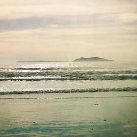 Sammy Miller - Silhouette island