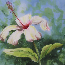 Nancy Goldman - Silk Hibiscus