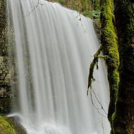Nick  Boren - Silver Falls 1