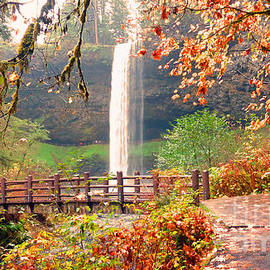 Tina Wentworth - Silver Falls State Park