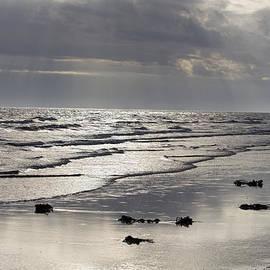 Tessa Fairey - silver ocean