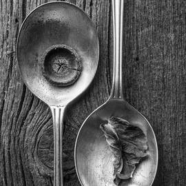 Edward Fielding - Silver Spoons Black and White
