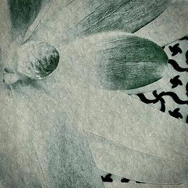 Susan Maxwell Schmidt - Simplicity