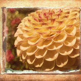 Jordan Blackstone - Simply Moments - Flower Art