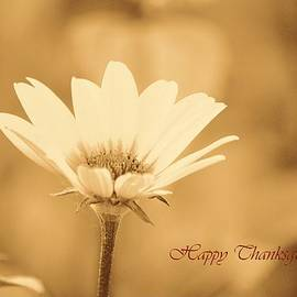 Sonali Gangane - Sincere Thanks