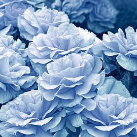 Jennie Marie Schell - Singing the Blues in the Rose Flower Garden