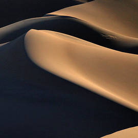 Joe Schofield - Sinuous Dunes