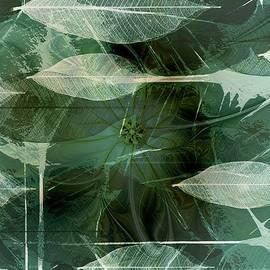 Amanda Moore - Skeletal Collage