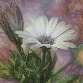 Lois Bryan - Sketchy Daisy In Mother Of Pearl