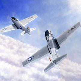 Douglas Castleman - Skyraiders Above the Clouds