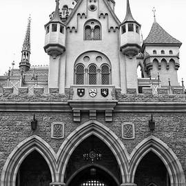 Thomas Woolworth - Sleeping Beauty Castle Disneyland Backside BW