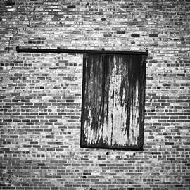 Patrick M Lynch - Sliding Door 1