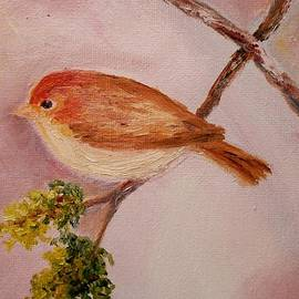Constantinos Charalampopoulos - Small friend
