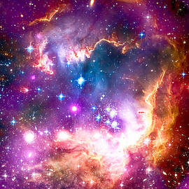 Eti Reid - Small Magellanic cloud fragment