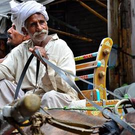 Imran Ahmed - Smiling man drives horse carriage in Lahore Pakistan