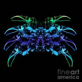 Steve Purnell - Smoke Spider 3