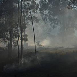 Michael  Podesta  - Smoke Threw The Trees