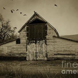 Janice Rae Pariza - Smokey Prairie Barn
