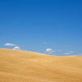 Randall Branham - Smooth Grains
