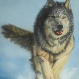 GD Rankin - Snodog - Watercolor