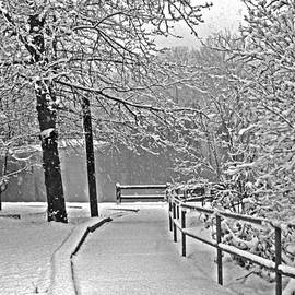 Andy Lawless - Snow along the path