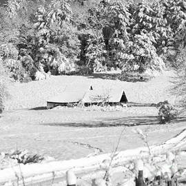 Laurinda Bowling - Snow Blanket in Black and White