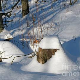 Ann Horn - Snow-Capped