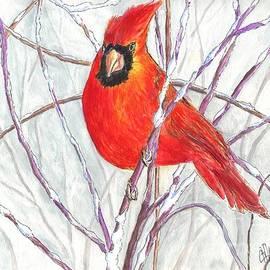 Carol Wisniewski - Snow Cardinal
