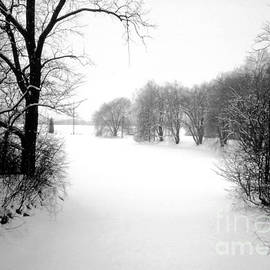 ImagesAsArt Photos And Graphics - Snow Covered Herrick Lake 1981