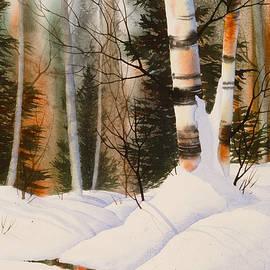 Teresa Ascone - Snow Crevice