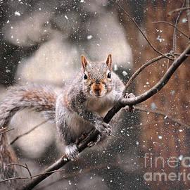Jai Johnson - Snow Day