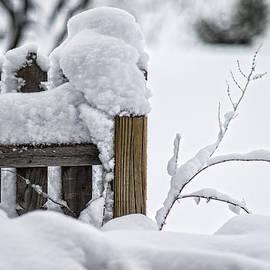 Karen Slagle - Snow Fence