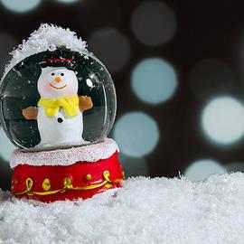 Carlos Caetano - Snow Globe