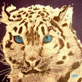 Joseph Hawkins - Snow Leopard